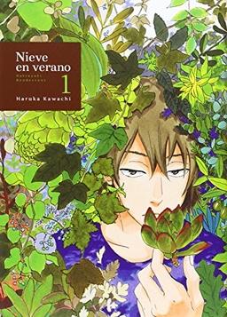 NIEVE EN VERANO # 01 DE 04