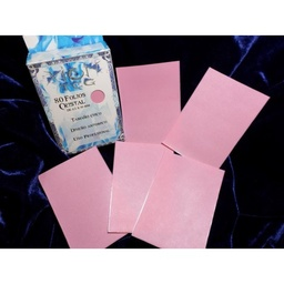 PROTECTORES XION SMALL X 80 ROSA